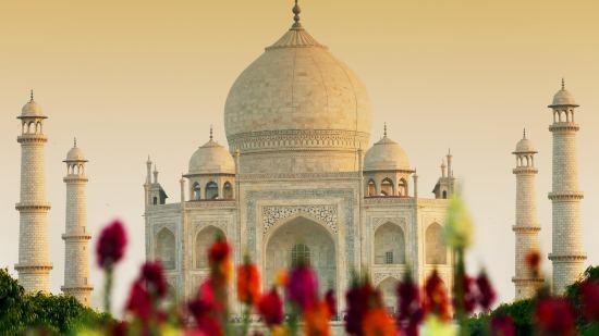 Екскурзия до Индия-Златният триъгълник Група 2 полет през Доха